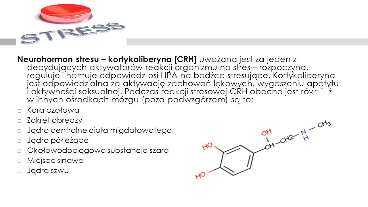Neurohormon stresu – kortykoliberyna [CRH] uważana jest za jeden z decydujących aktywatorów reakcji organizmu na stres – rozpoczyna, reguluje i hamuje odpowiedz osi HPA na bodźce stresujące. Kortykoliberyna jest odpowiedzialna za aktywację zachowań lękowych, wygaszeniu apetytu i aktywności seksualnej. Podczas reakcji stresowej CRH obecna jest również w innych ośrodkach mózgu (poza podwzgórzem) są to;